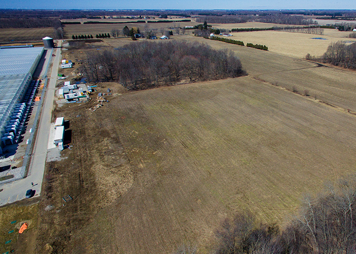 WeedMD to Expand Production with Outdoor Cannabis Cultivation at its Licensed 98-Acre Strathroy Property | feature