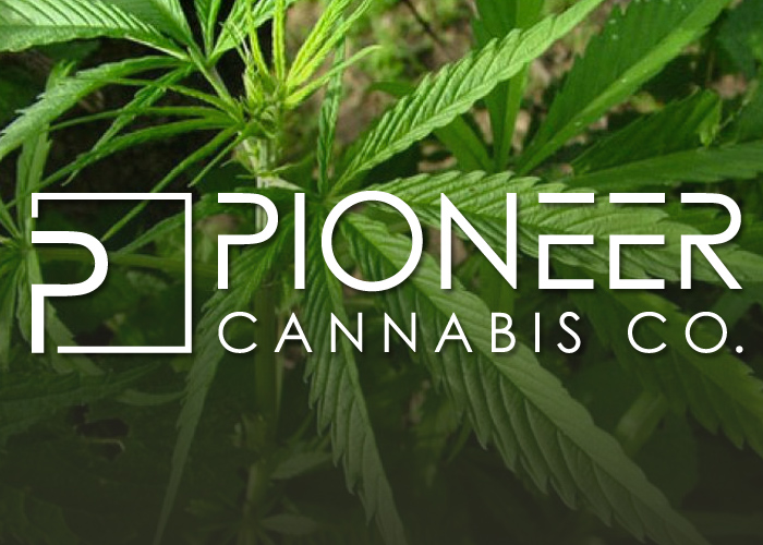 Pioneer Cannabis, a Collaboration Between WeedMD and Pita Pit Canada, Signs with Ontario Cannabis Retail Operator | website-feature