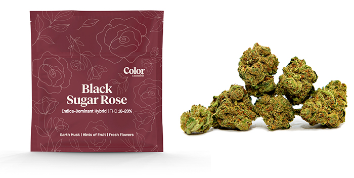 Black Sugar Rose from Color Cannabis
